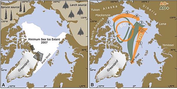 arctic tip2