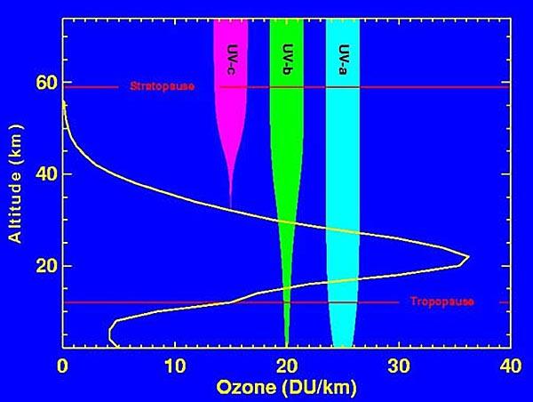 ozon9
